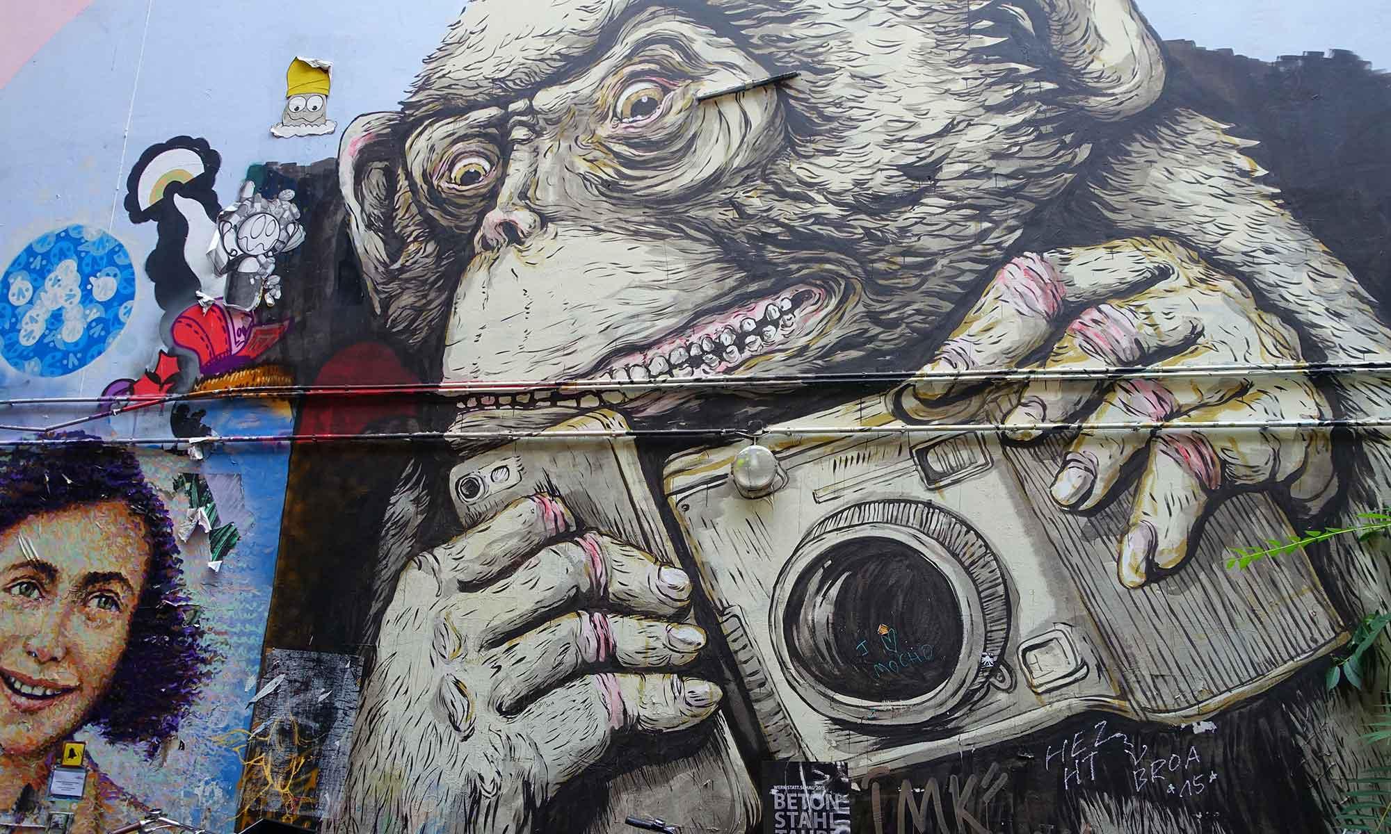 Graffiti mit Affe und Fotoapparat